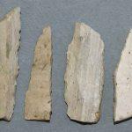 Lames à dos abattus, Silex, Époque paléolithique (aurignacien-perigordien), Saint Martin-sous-Montaigu (S.-et-L.). © musée Denon