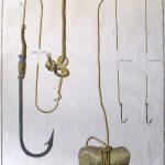 Hameçons montés, ligne lestée d'une pierre, Extrait du traité Général des pesches et histoire des poissons, pl. IV, de Duhamel du Monceau, gravure Ransonette, Paris 1769 Papier L. 410 ; l. 270 mm